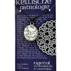 Keltische Astrologie Ngetal